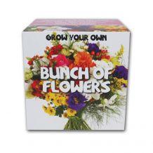 Bouquet de fleurs à faire pousser soi-même