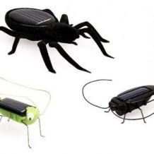 Kit de jouets solaires en forme d'insectes