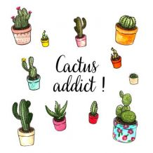 Pochette surprise Cactus