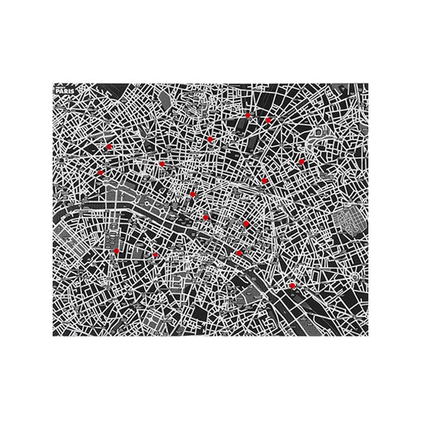 Carte de Paris Pincity