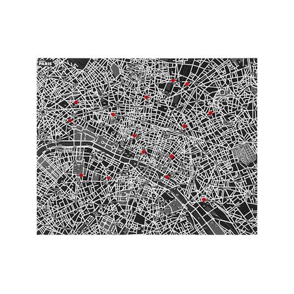 Carte de Paris Pincity