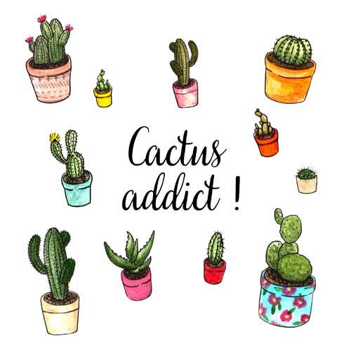 Pochette surprise Cactus